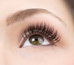 Lashes and Brow Treatments semi permanent lashes